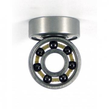Ceramic Ball Bearing Zro2 Si3n4 608 6000 6800 Plastic Bearing