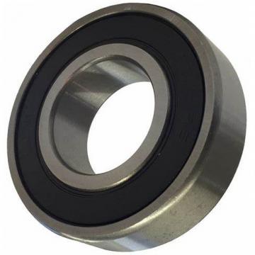 SKF Auto Bearing Deep Groove Ball Bearing 6202-2rsh 6202-2RS1/C3 6200 6201 6202 6203 6204 6205 2z 2RS 2rsh C3